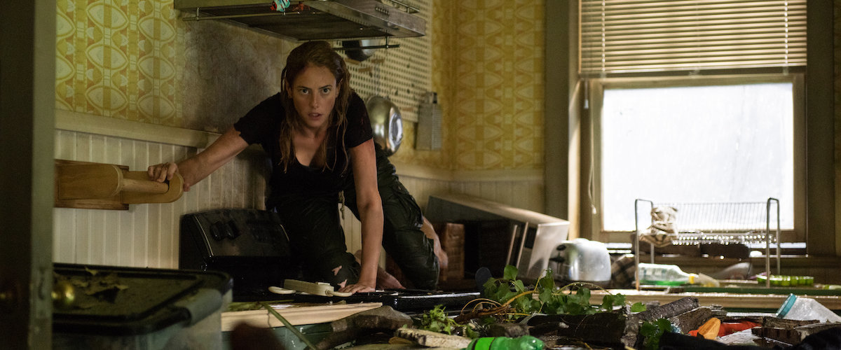 Crawl Review, Film Ireland